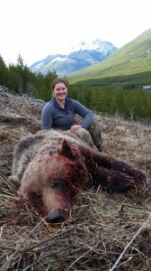 grizzly bear hunting bc